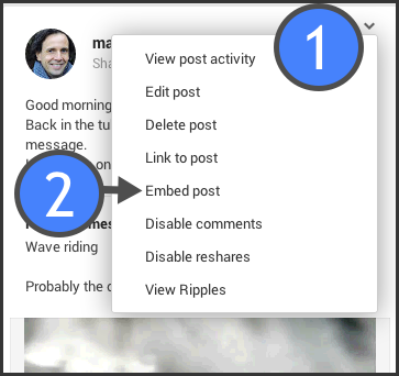 Accessing the embed link