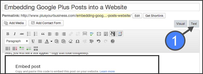 Choose 'text' in Wordpress