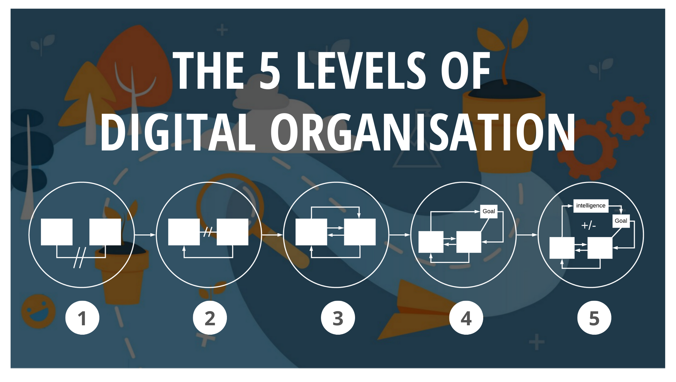 The 5 Levels of Digital Organisation - thumbnail (1)
